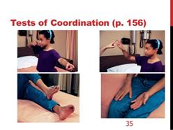 Tests of Coordination (p. 156)
