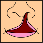 http://upload.wikimedia.org/wikipedia/commons/thumb/1/11/Cleftlip2.svg/150px-Cleftlip2.svg.png